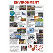 Educational Charts Series Environment (Dreamland)
